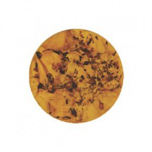 MY IMENSO CRACKED AMBER SHELL IN RESIN 33MM - 62977
