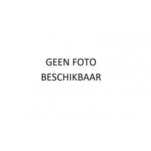 GOUDEN ARMBAND BICOLOR 18.5 CM GERSTEKORREL - 75261