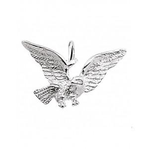 GW zilver bedel - 60038